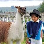 ekvador galeas 5