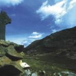 irlandiya galeas 4