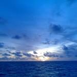 maldivy galeas 1