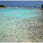 maldivy galeas 3