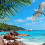 sejshelskie ostrova galeas 10