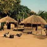 zambiya galeas 1