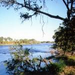 zambiya galeas 3